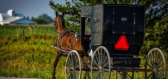 Защо амишите живеят толкова дълго?